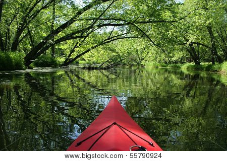 Backwaters Kayaking