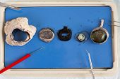 picture of eye-sockets  - Dissecting a sheep eye with the various tissues displayed on a tray including the eyeball lens and surrounding muscle from the eye socket - JPG