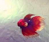 foto of siamese fighting fish  - Fight fish in water 3d render computer graphic illustration in mosaic flat surface style - JPG