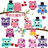 stock photo of owls  - Vector Set of Wedding Themed Owls and Branches - JPG