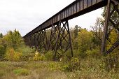 stock photo of trestle bridge  - A steel railroad bridge in the woods - JPG