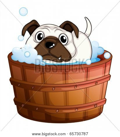 Illustration of a bulldog inside the bathtub on a white background