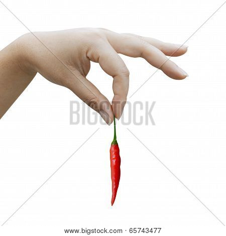 Woman Hand Holding A Red Chili Pepper On White