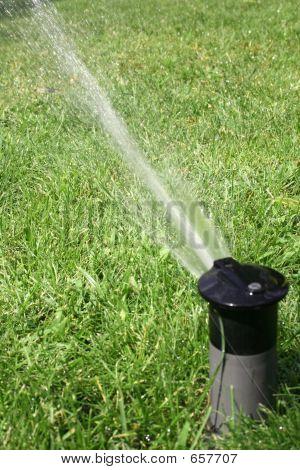 Aspersor de rega gramado verde no verão