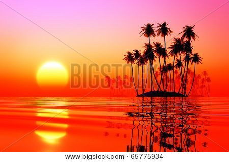 Coconut Islands At Pink Sunset