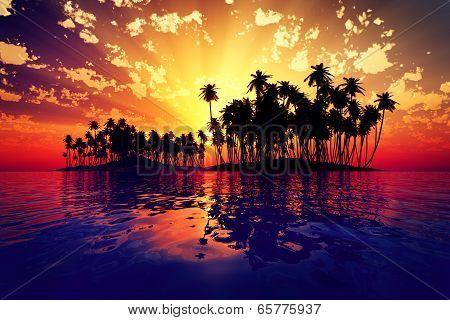 Sun Rays Inside Coconut Island