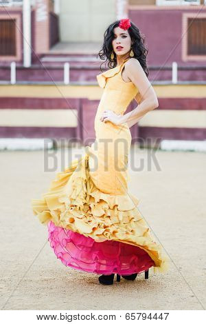 Woman, Model Of Fashion, Wearing A Dress In A Bullring