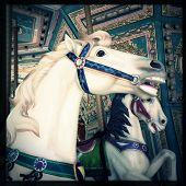 foto of carousel horse  - Instagram filtered style image of a carousel horse - JPG