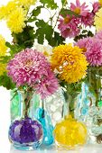 Beautiful flowers in vases with hydrogel close up poster