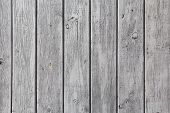stock photo of gey  - The wall of wooden planks painted in white or gey - JPG