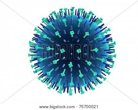 h1n1 virus