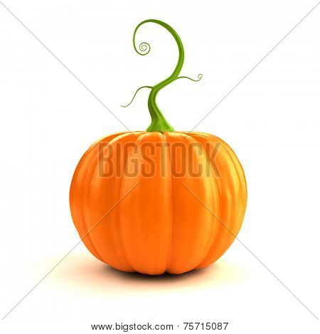 3d rendered illustration of a big, orange, pumpkin