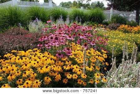 colorful garden