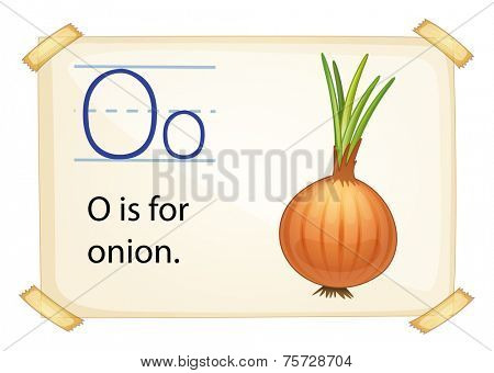 A letter O for onion on a white background