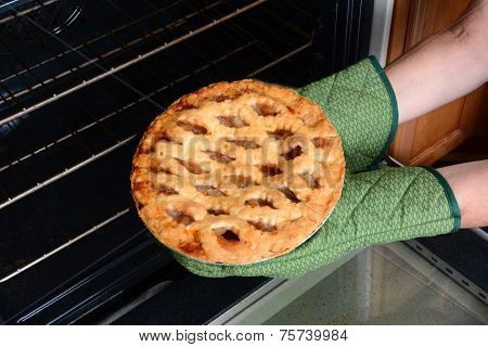 Closeup of a woman taking a fresh baked pumpkin pie from the oven. Pumpkin Pie is a traditional American desert for Thanksgiving Day feasts. Horizontal with womans hands in oven mitts only.