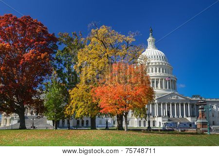 United States Capitol Building in Autumn foliage - Washington DC, USA