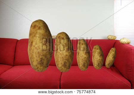 Concept of a Couch Potato Family