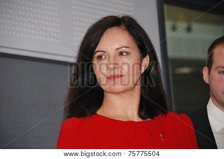 HASTINGS, ENGLAND - NOVEMBER 10, 2014: Caroline Flint, Shadow Secretary of State for Energy and Climate Change and Labour M.P. for Don Valley, attends an energy efficiency policy announcement.