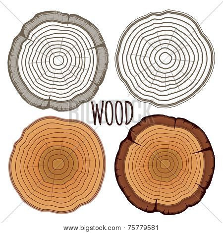 Vector tree rings