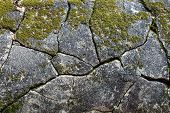 picture of old stone fence  - Moss on the stone - JPG