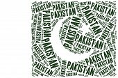 image of pakistani flag  - National flag of Pakistan - JPG