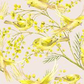 stock photo of mimosa  - Seamless Spring Pattern with Watercolor Sprig of Mimosa and Yellow Bird - JPG
