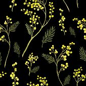 image of mimosa  - Seamless Spring Pattern with Watercolor Sprig of Mimosa - JPG