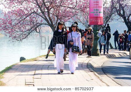 Dalat City, Spring Flower, Pretty Girl