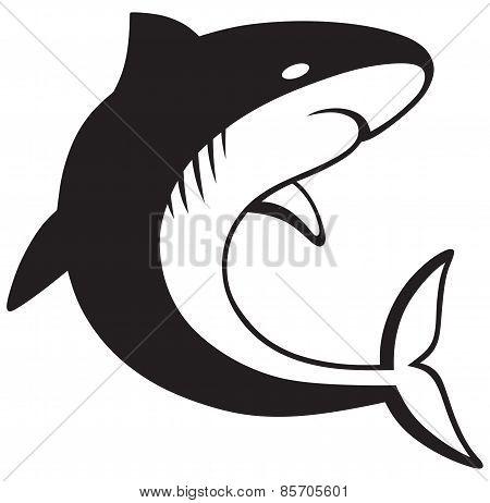 Silhouette shark