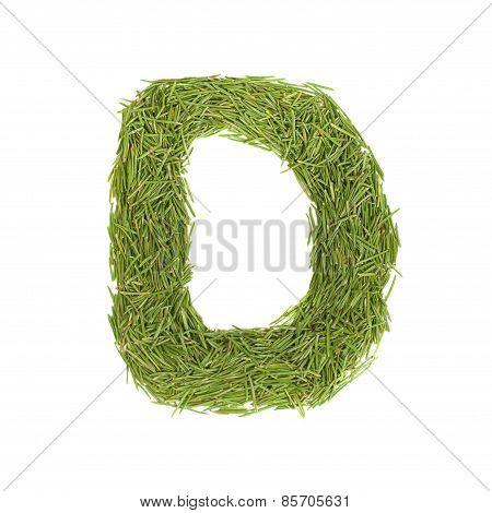 Green Alphabet, Letter D