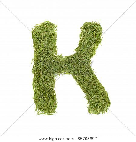 Green Alphabet, Letter K