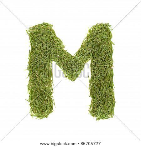 Green Alphabet, Letter M