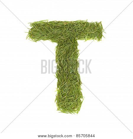 Green Alphabet, Letter T