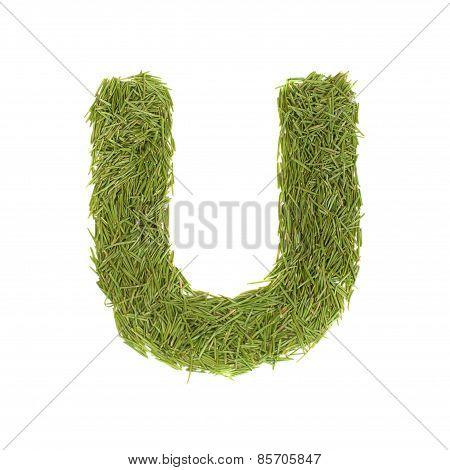Green Alphabet, Letter U