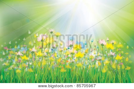 Vector background with colorful flowers.