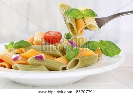 Eating Colorful Penne Rigate Noodles Pasta Meal