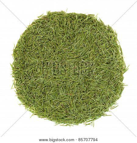 Circle Stack Of Green Needles