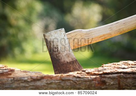 Axe In Wood