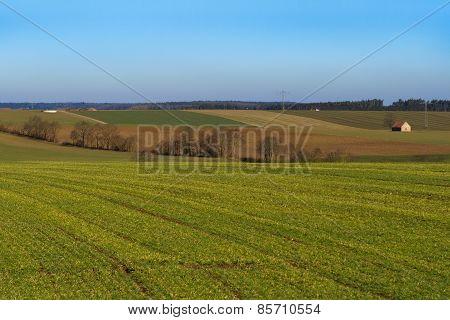 Germany, Bavaria. Spring Fields