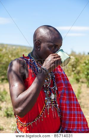 MASAI MARA,KENYA, AFRICA- FEB 12 Masai shaman is drinking a cup of cow blood in traditional clothes,