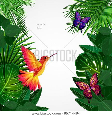 Tropical leaves with birds, butterflies. Floral design background with colibri.