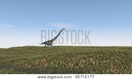 mamenchisaurus walking on grass terrain
