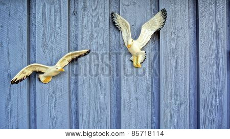 Two White Seagulls On The Wall