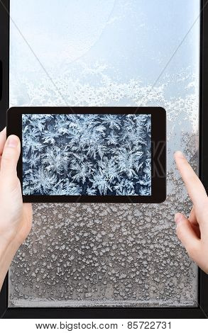 Tourist Photographs Of Snowflakes And Frost