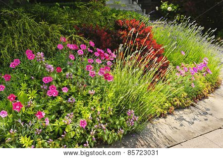 Landscaped garden at house with blooming flowers