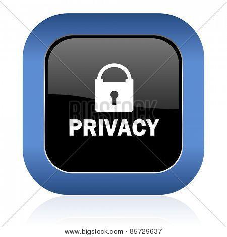 privacy square glossy icon