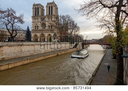 Paris. Notre Dame. Christmas.