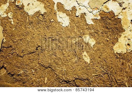 Home Soil Wall Texture