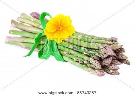 green asparagus vegetable