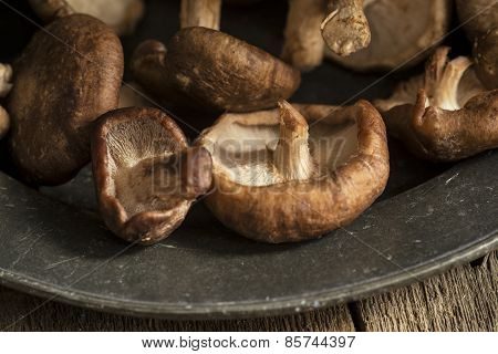 Fresh Shiitake Mushrooms In Moody Natural Light Setting With Vintage Retro Style
